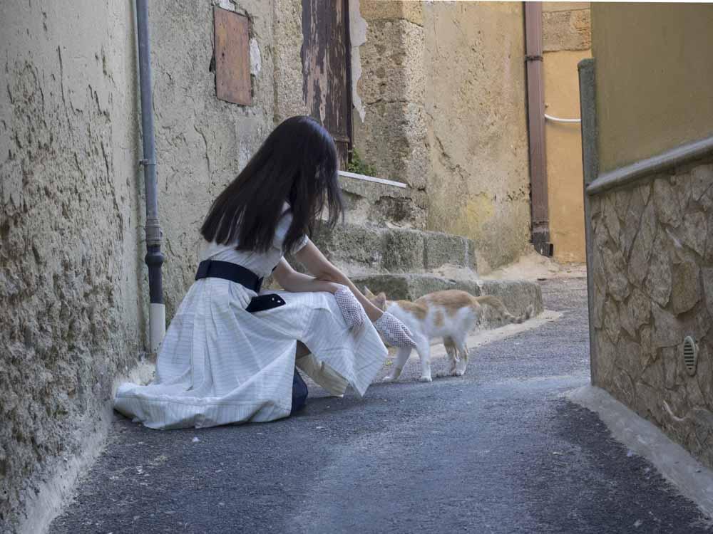 samantha e un gatto caltagirone sicilia